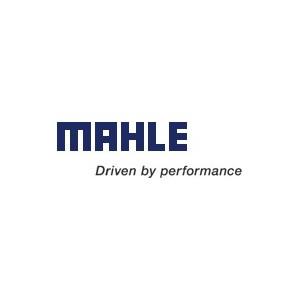 Segmentation Mahle